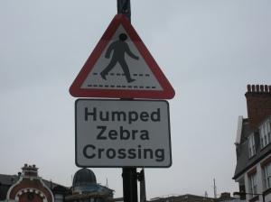 humped zebra crossing