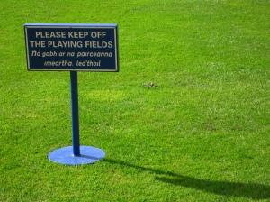 Trinity grass
